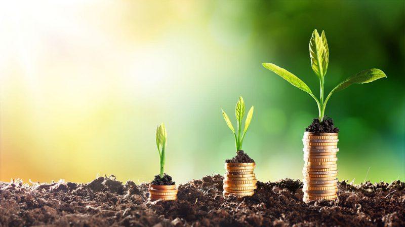 Quy định và thủ tục tăng vốn điều lệ công ty cổ phần nên biết (2)